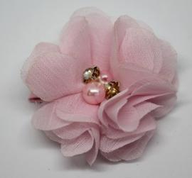 Bloem Suus roze