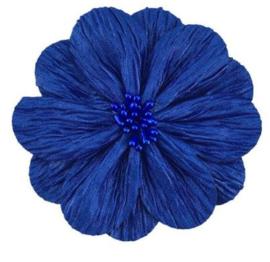 Bloem Lily 8cm kobaltblauw