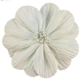Bloem Lily 8cm offwhite