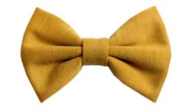 Strik Judith tricot mosterd geel