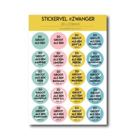 Stickervel 'Zwanger'