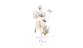 TEKENKIST FULLCOLOR   FLOWERS