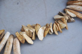 """""""Shaman """"necklace of fossil shell parts, Nepal, late 20th century"""