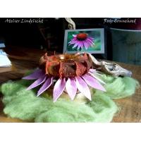Rode Zonnehoed ( Echinacea )