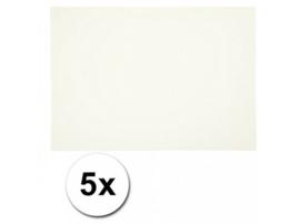 Karton A4 Wit 160 grams - 5 Vellen