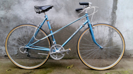Raleigh Damenrennrad