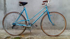Mixed vintage dames racer