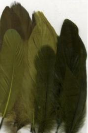 Veren groen mix 12,5-17,5 cm 15 ST