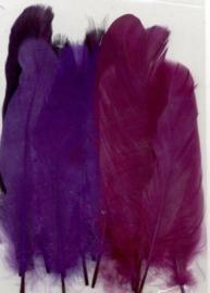 Veren paars mix 12,5-17,5 cm 15 ST