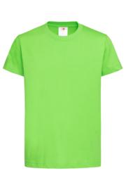 Classic-T Crew Neck Kids  kiwi green XS (110/116)