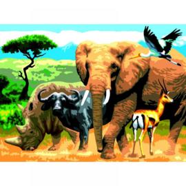 Schild.op nummers Junior L 27,5x35cm Afrikaanse dieren