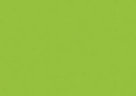1 vel Fotokarton licht groen 50X70-300G