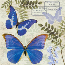 Servetten 5st - Vlinder - Blue Morpho 33x33cm Ambiente 13313355 (04-19)