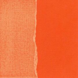 1 PK  Cardstock orange 5 VL 30,5X30,5 CM / GX-CO040