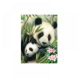 Schild.op nummers Junior 22,5x30cm Panda's