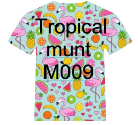 M009 Easy Patterns Tropical Mint