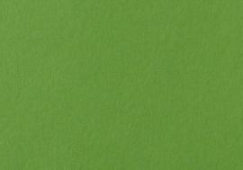 1 PK (10 VL) Tekenpapier grasgroen 50X70/130G