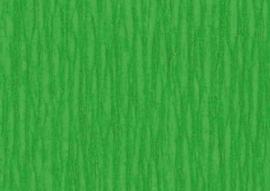 1 Pak Crepepapier groen 250X50CM