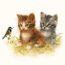 Servetten 5st - Kittens 33x33cm Ambiente 13310170
