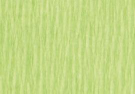 1 Pak Crepepapier wit groen 250X50CM