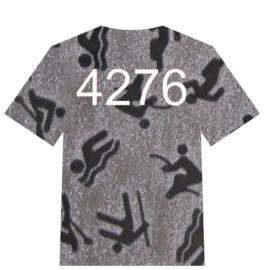 4276 Sports Image