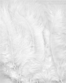 Marabou veren wit 15 ST