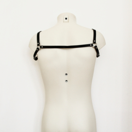 ELICIT HARNESS