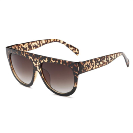 STATEMENT - leopard
