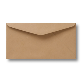 Enveloppen Kraftpapier (11 x 22 cm)