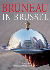 Bruneau in Brussel