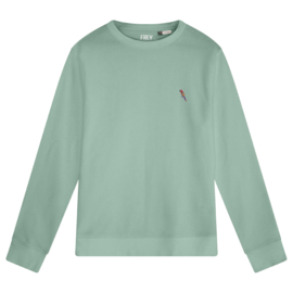 Parrot Women's Sweater | Sage