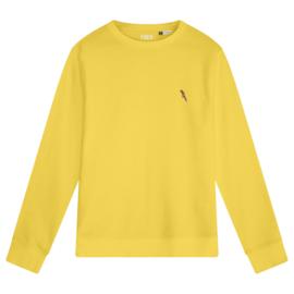 Parrot Men's Sweater | Yellow