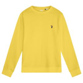 Toucan Men's Sweater | Yellow