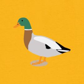 Duck Tee | Yellow