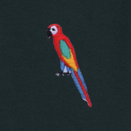 Tee Parrot | Black