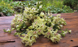 Rouwarrangement Cynbiduim Orchideeën.
