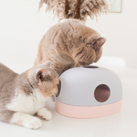 MS! Hola Cat Toy - 3 in 1