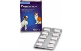 Panacur 250, doosje 10 tabletten