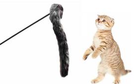 Alles voor de katten, of toch niet...  >>>