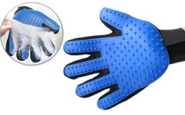 Borstel handschoen