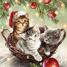 Servetten katten kerstmis
