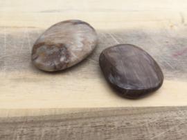 Jaspis hout