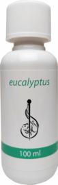 Sauna opgiet concentraat Eucalyptus 100ml