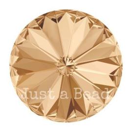 1122 rivoli 10mm puntsteen SS47 crystal golden shadow F (001 GSHA)