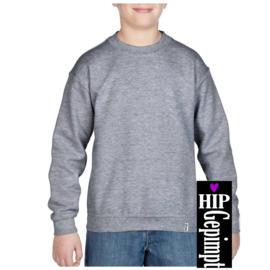 Sweater Kids - Grijs