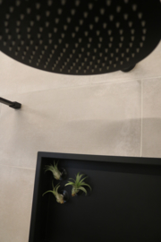 6 BadkamerPlantjes, maat klein