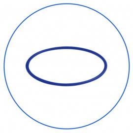 Bottom O-ring  voor filterhuis  OR-N-900X35