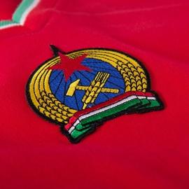 Hongarije Retro voetbalshirt jaren '70
