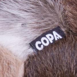 COPA COW FOOTBALL