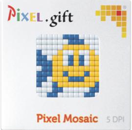 Pixel XL promotiedoosje vis
